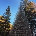 Bume in Lenzerheide sleds trees swissmountains